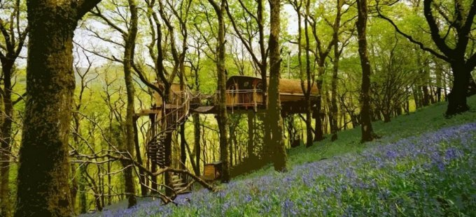 treehouse-glamping-wales