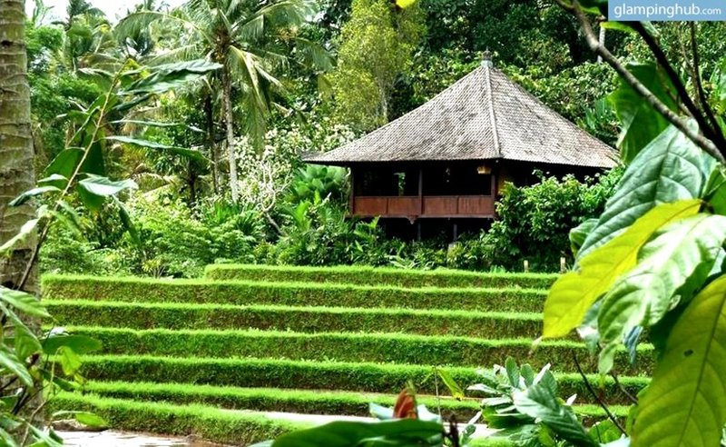 rice-paddy-bungalow-glamping-bali-indonesia