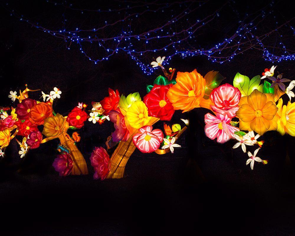magical-Lantern-Festival-144-1000x800