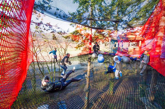 zip-world-treetop-nets