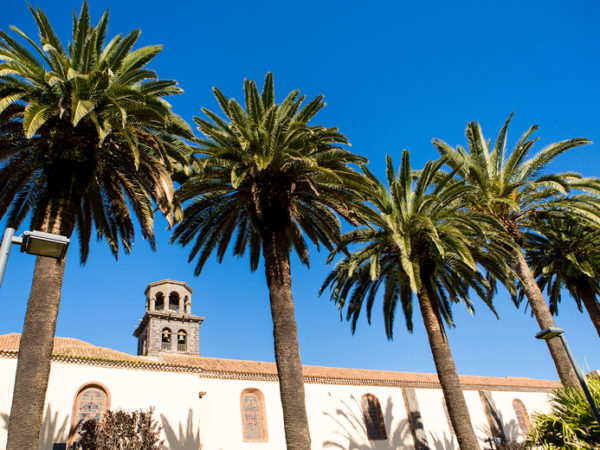 Escape with a three, four, five or seven-night 4* getaway to Tenerife - Now with the ability to choose your flight!