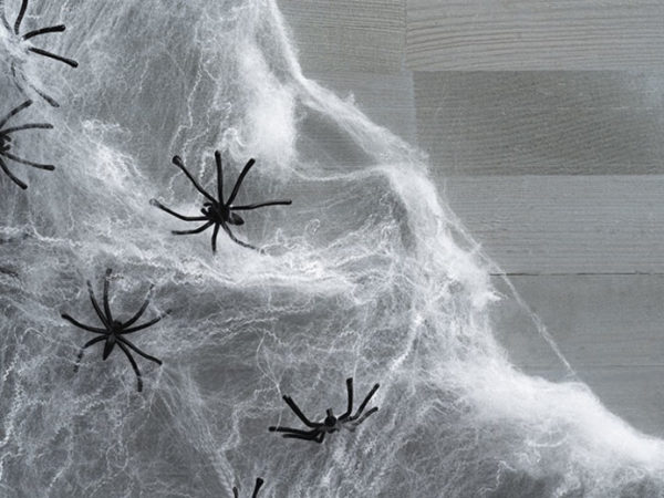 £1.99 (from Forever Cosmetics) for a spooky Halloween spider web, £3.49 for a set of two or £4.99 for a set of three - choose from three colours