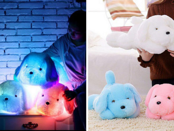 £11 instead of £49.99 (from Wow What Who) for a LED glowing dog toy - save 78%