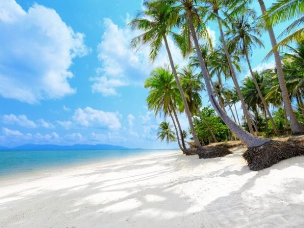 Discover Phuket at your own pace, Phuket, Thailand