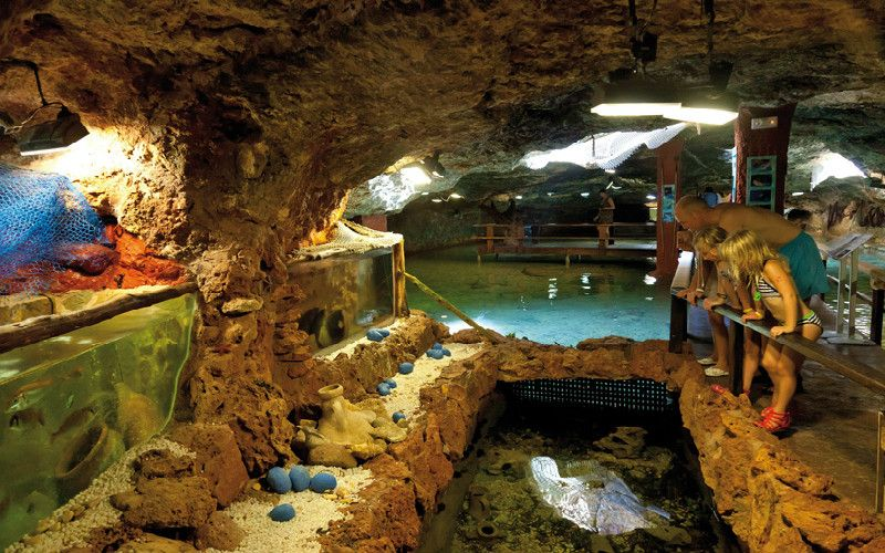 kids at zoo aquarium in aquariumcapblanc