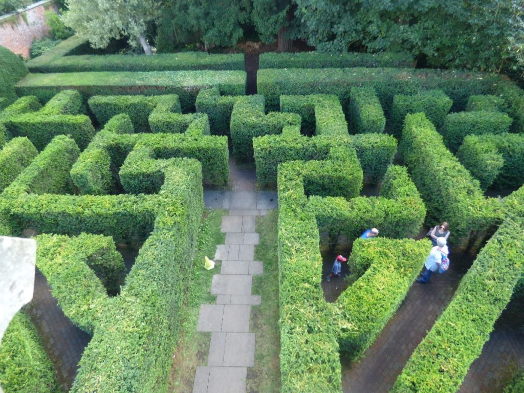 family looking around the garden maze at hampton court palace