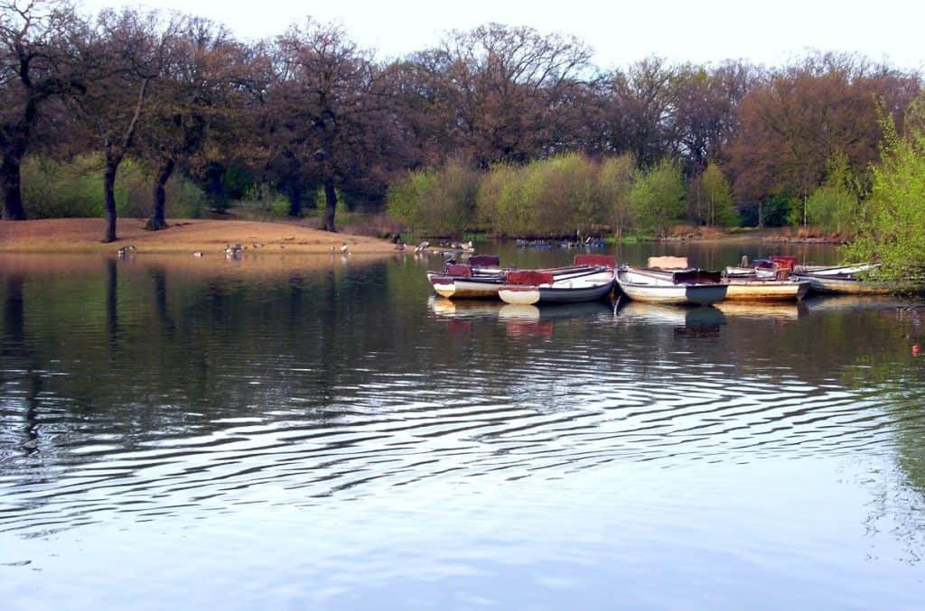 lake where you can do boat riding and explore the ancient woodland at epping forest